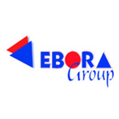 empresa asociada ASETIFE ebora grupo 2020 - Asóciate